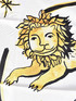 Dior The Lion Scarf